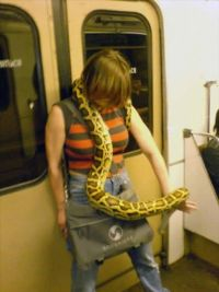 woman-with-snake-on-subway