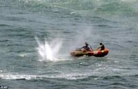Shark Attack CSC